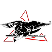 Streetfighting Training icon