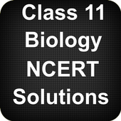 Class 11 Biology NCERT Solutions icon