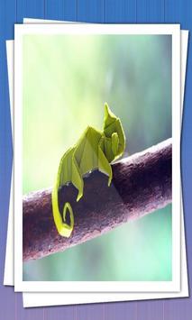 Оригами apk screenshot