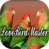 Kicau Master LoveBird icon