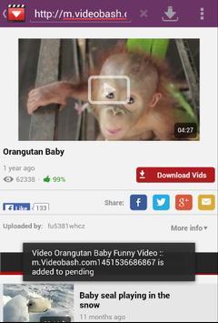 Download Video apk screenshot