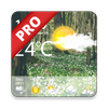 Icona Weather Forecast Pro