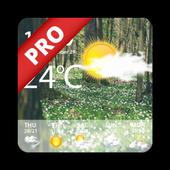 Weather Forecast Pro v1.1 (Paid)