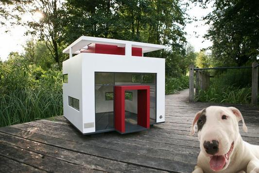 Dog House Design poster