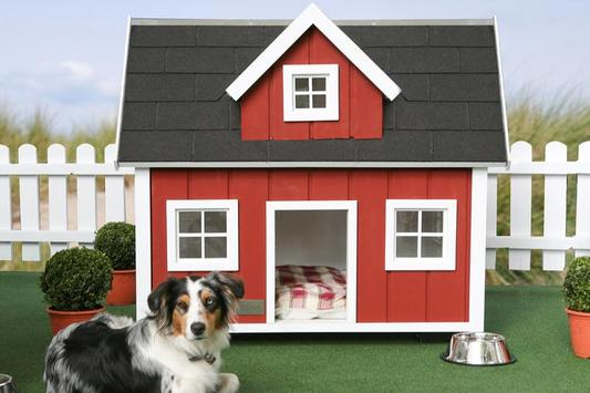 Dog House Design screenshot 1