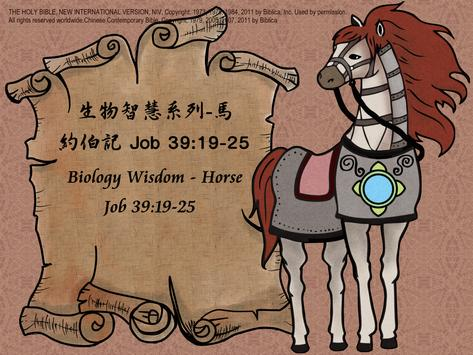 生物智慧系列-戰馬 poster
