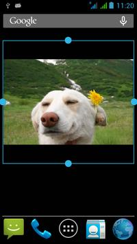 Photo Widget-7 apk screenshot