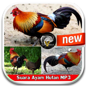 Chicken Sound mp3 icon