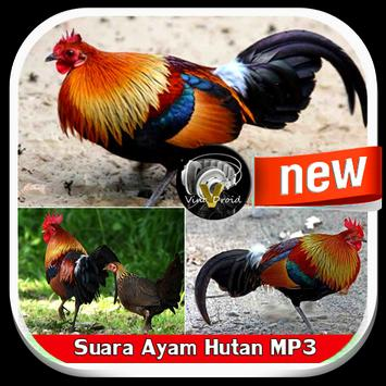 Chicken Sound mp3 apk screenshot