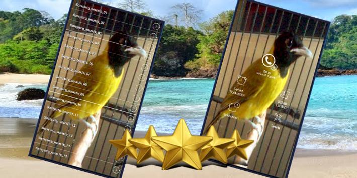 Suara Burung Samyong : Kicau Samyong Masteran screenshot 1