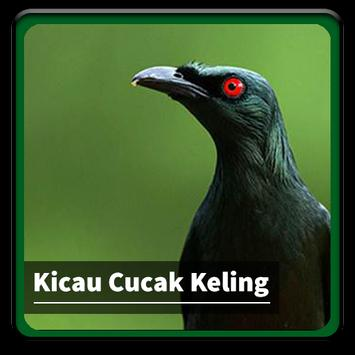 Scarica Kicau Suara Burung Cucak Keling Apk Per Android Ultima Versione