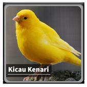 Kicau Suara Burung Kenari icon