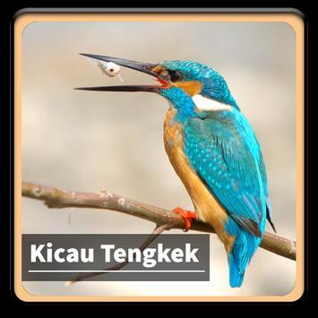 Kicau Suara Burung Tengkek poster