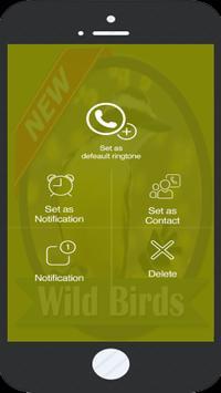 Wild Birds screenshot 2