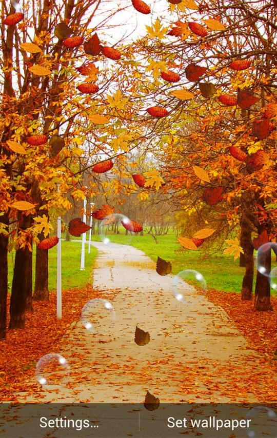 Autumn Wallpaper 2 For Android Apk Download