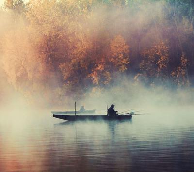 Mist Wallpapers apk screenshot
