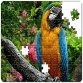 Master Puzzle - Birds icon