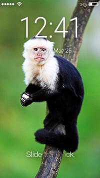 Capuchin Monkey Screen Lock poster