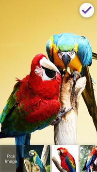 Parrot Ara Lock Screen screenshot 2