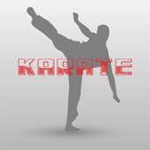 Karate Training and Exercises icon