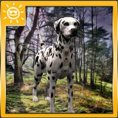 Dalmatian Survival Simulator icon