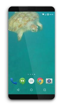 Turtle Underwater Live WP apk screenshot