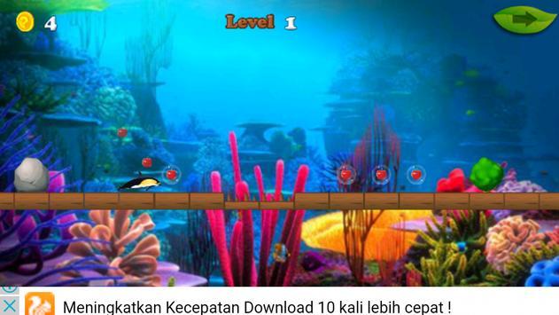 Dolphin Rush Games apk screenshot