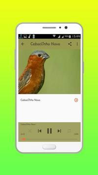 Caboclinho DO RÉ MI HD apk screenshot