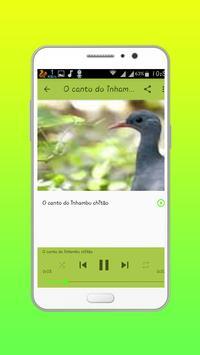 Canto De Inhambu Chororo apk screenshot
