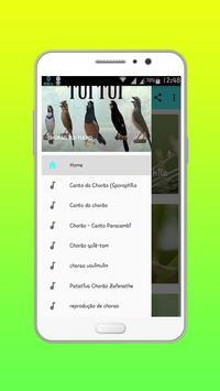 CHORÃO TUI-TUI HD OFFLINE poster