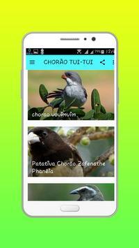 CHORÃO TUI-TUI HD OFFLINE apk screenshot
