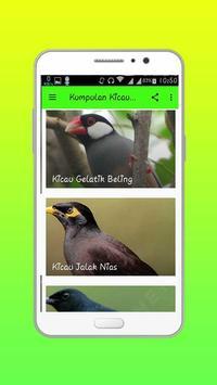 Kumpulan Kicau Burung screenshot 1