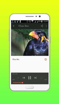 Kumpulan Kicau Burung screenshot 2