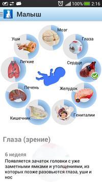 Я беременна (free) screenshot 11