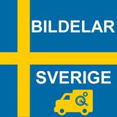 Bildelar Sverige icon
