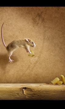 Funny Mouse Wallpaper apk screenshot