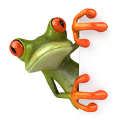 Funny Frogs Wallpaper icon