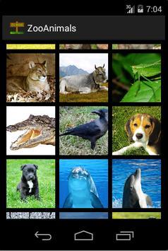 Zoo : Animal Photos & Sounds apk screenshot
