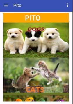 pito apk screenshot