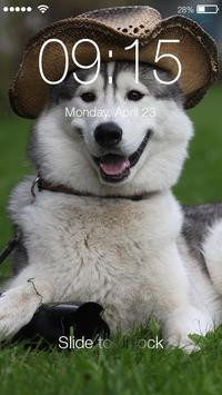 Funny Joke Husky Lock Screen poster