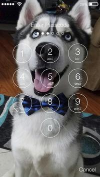 Funny Joke Husky Lock Screen apk screenshot