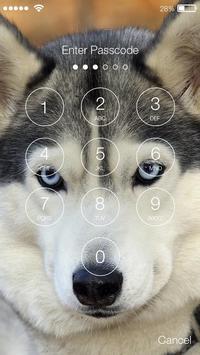 Siberian Husky Dog PIN Lock apk screenshot