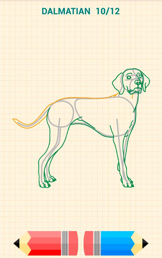 How to Draw Dogs poster