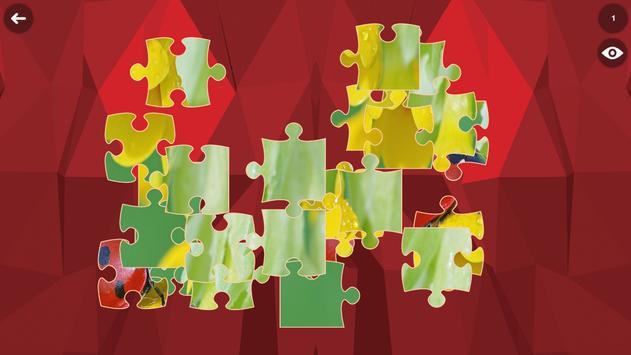 Ladybug HD Jigsaw Puzzle screenshot 8