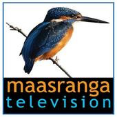 Maasranga TV HD LIVE icon