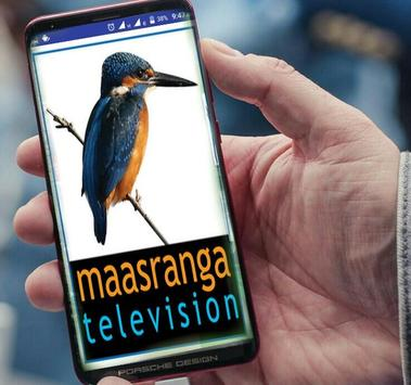Maasranga TV HD LIVE screenshot 1