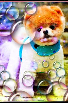 Bubbles Photo Effect apk screenshot