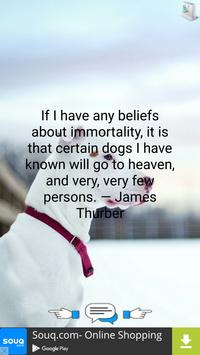 Quotes About Dogs poster