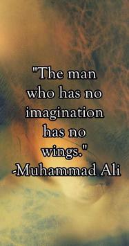 Imagination Quotes & Sayings apk screenshot