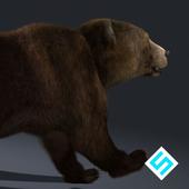 Real Bear Simulator icon